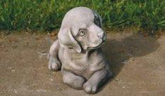 Small Lying Puppy