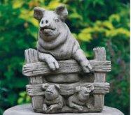 Med Pig F