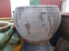 Chief Bowl