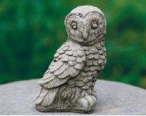 Midi Owl